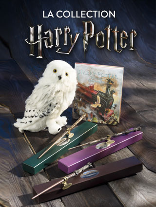 Collection Harry Potter - Accessoires