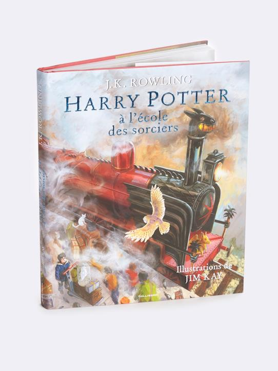 Poufsouffle-Livre Harry Potter à l'école des sorciers Collection Harry Potter