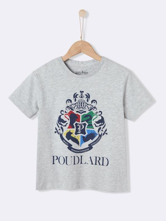 Garçon-De 8 à 16 ans-T-shirts, polos-T-shirt collection Harry Potter