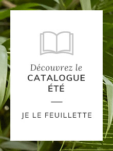Je feuillete le catalogue